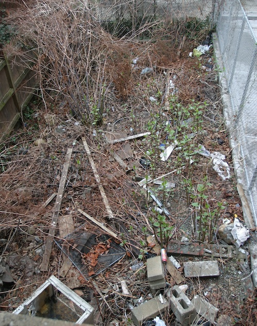 Messy townhouse garden with construction debris